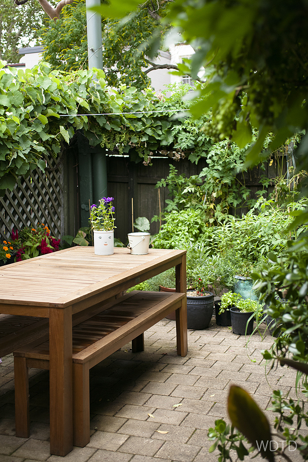 WDTD is in love with Niki's cute and very lush little backyard that is packed with many green goodness!